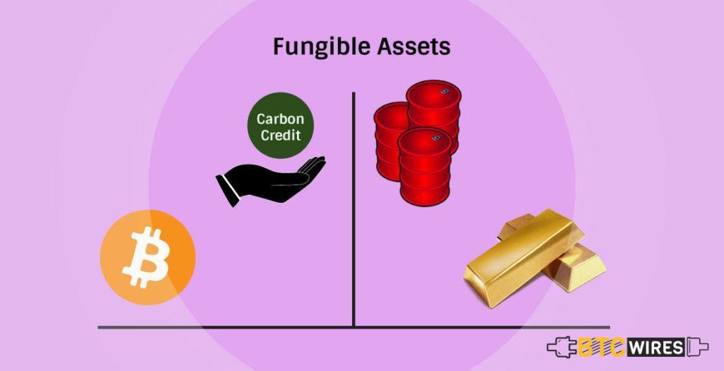 Fungible Assets