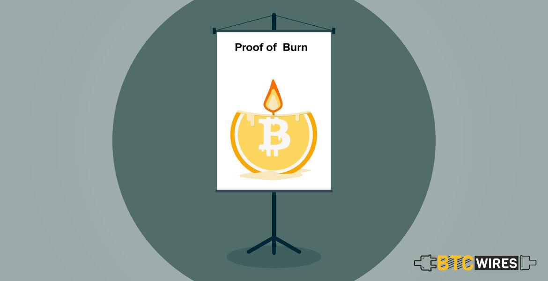 Proof-of-Burn